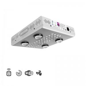 WiFi 600W nur kattalashtirish LED